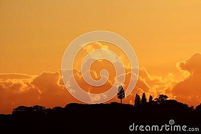 Fantasy Clouds Orange Landscape