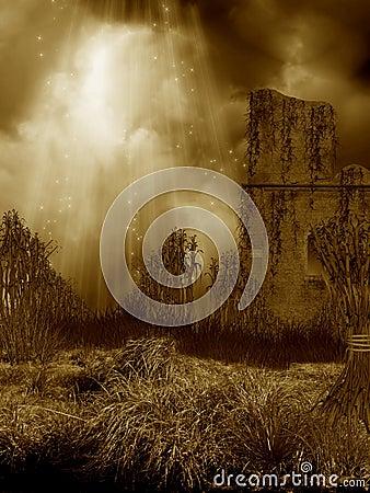 Fantasy corn field