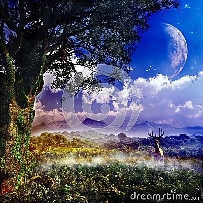Fantasy Landcape