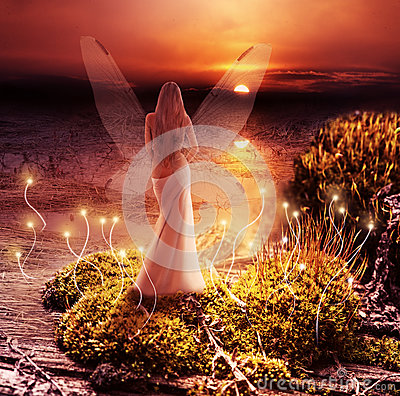 Free Fantasy Magic World. Pixie And Sunset Stock Photo - 30817830
