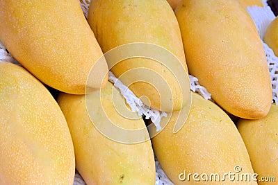 Farbe und Form von Mangos