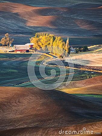 Free Farm Stock Photo - 103905220