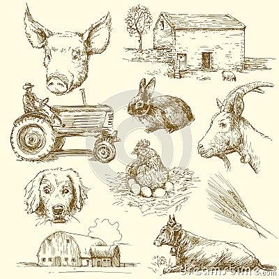 Free Farm Animals Royalty Free Stock Image - 25329876