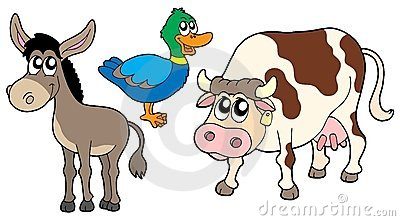 Farm animals collection 3