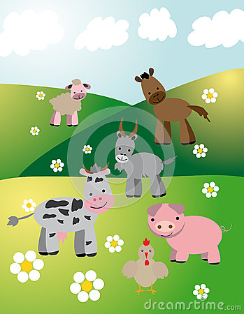 Farm animals on fields