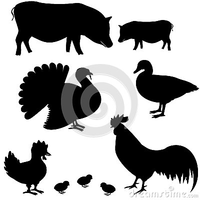 Farm animals vector silhouettes