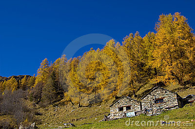 Farm in autumnal mountain