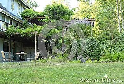 Farm backyard view