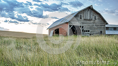 Farm barn in a field of grass