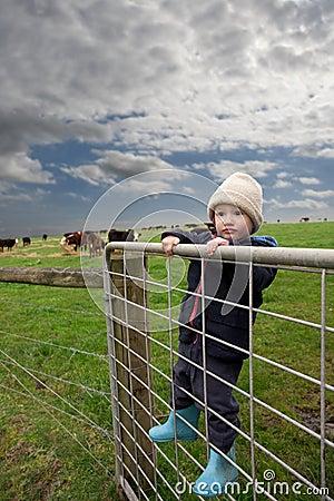Farm boy on gate