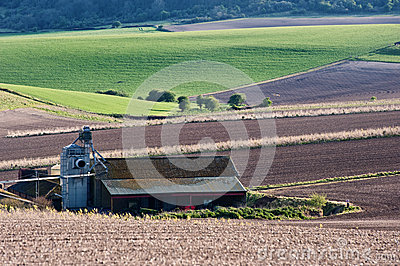 Farm building barn in landscape