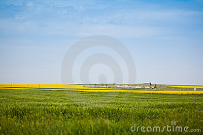 Farm in the countryside