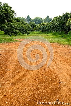 Farm dusty road