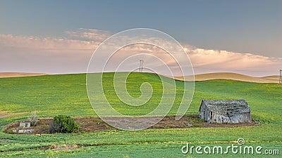 Farm field plowed around a barn at sunrise