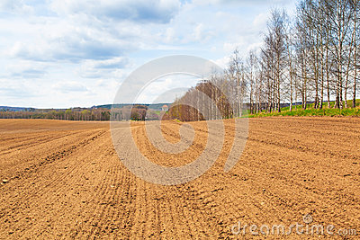 Farm field in the spring time