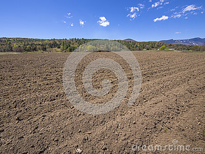 Farm field in Vermont