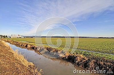 Farm field in the winter