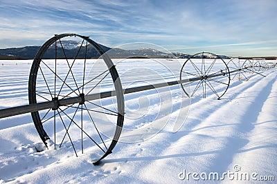 Farm field in winter.