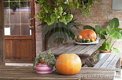 Farm holidays decorations