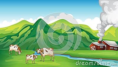 A farm house and cows
