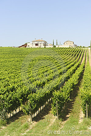 Free Farm In Umbria Stock Photo - 23420920