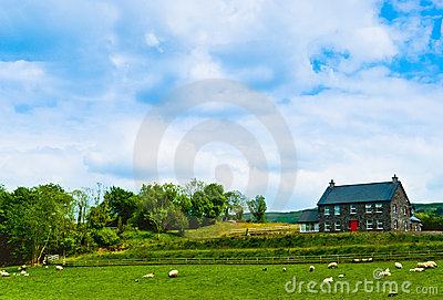Farm in Ireland