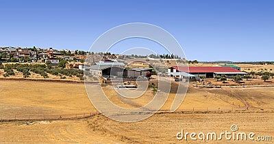 Farm of Jaen