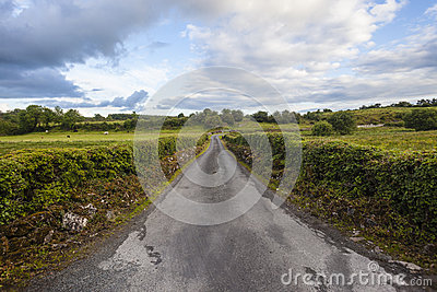 Farm Road Landscape Ireland