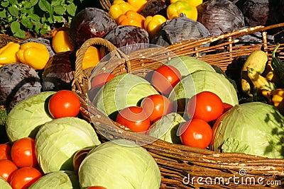 Farm seasonal vegetable