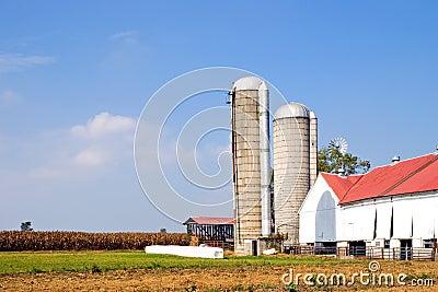 Farm and silos