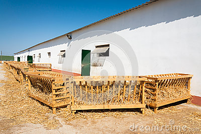 Farm stable and wooden stall