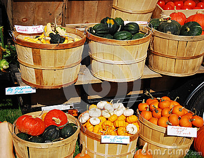 New England Farm Stand