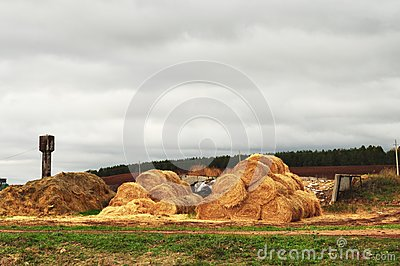 Farm, the stock of straw