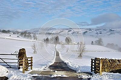 Farm Track Leading Through Snow