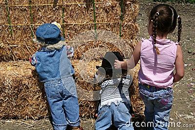 Farm Trio