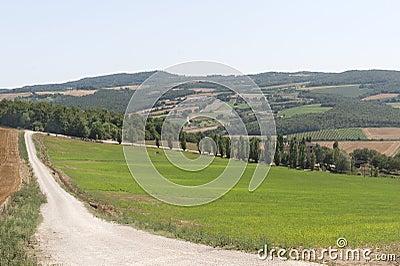 Farm in Umbria