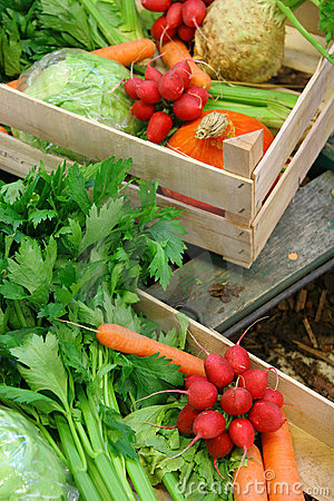 Free Farm Vegetable Market Royalty Free Stock Photo - 16555955