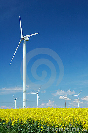 Farm of windturbines close to rape field