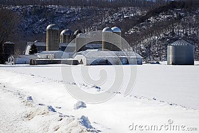 Farm during winter