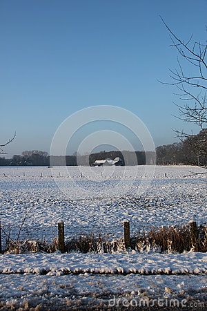 Farm in a winter forest