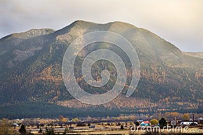Farm Yellow Trees Hills Fall Colors Montana