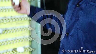Farmer που λειτουργεί στο αγρόκτημα κοτόπουλου, τα αυγά και την παραγωγή πουλερικών