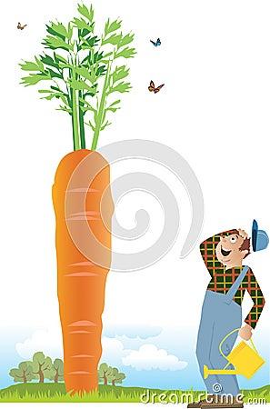 Farmer and a carrot