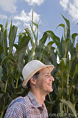 Farmer in a corn field