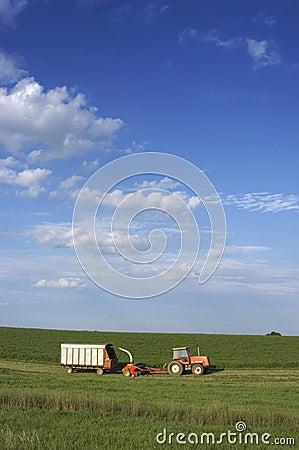 Farmer Cutting Hay