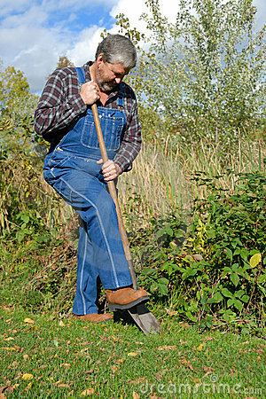 Free Farmer Digging Royalty Free Stock Photography - 3866717