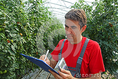 Farmer in a Greenhouse