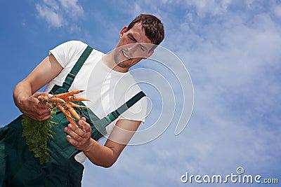 Farmer harvesting carrots