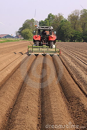 Farmer plowing land straight lines Editorial Image