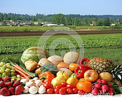 Farmer s crop